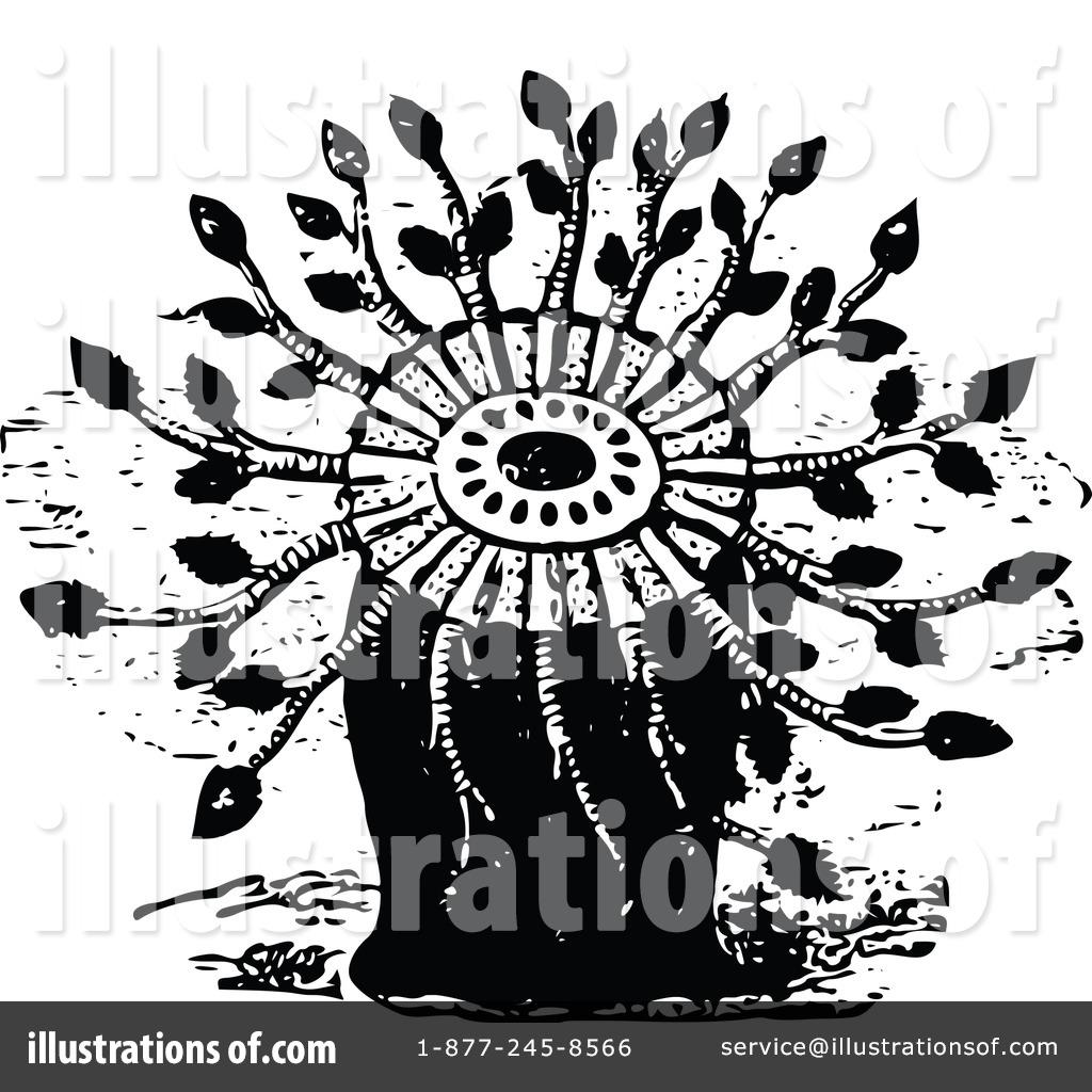 Anemone clipart black sea Vintage Illustration Royalty Clipart Sea