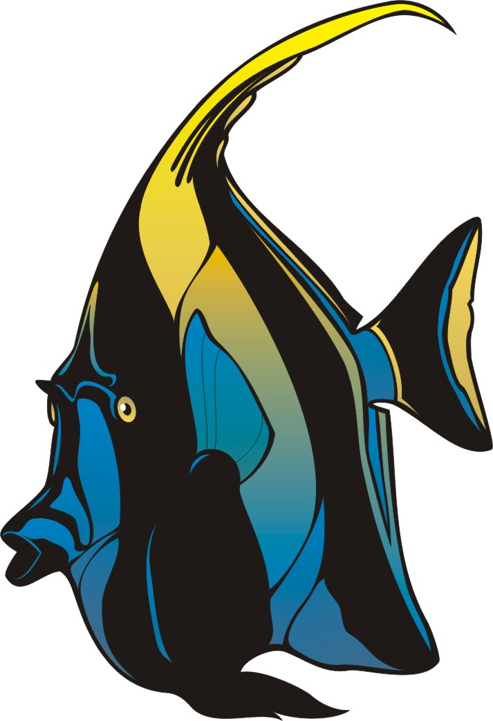 Angelfish clipart pretty fish Clipart Cool The Clipart Angelfish