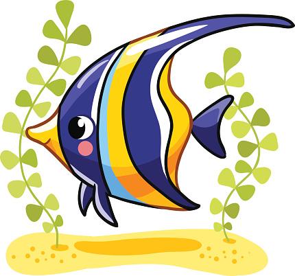 Angelfish clipart Angelfish Angelfish clipart Angelfish drawings