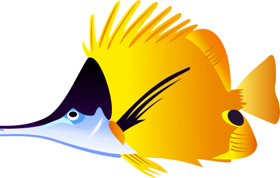 Angelfish clipart Angelfish Inspiration and Cliparts Clipart