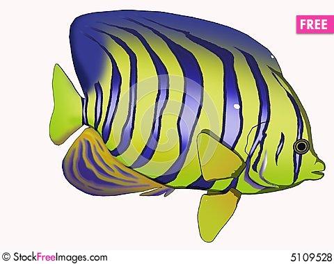 Angelfish clipart cartoon & Stock Free Angelfish Photos