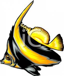 Angelfish clipart cartoon Angel Brillant Brillant Colorful Fish