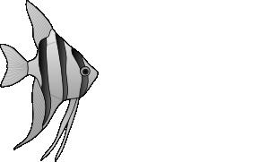 Angelfish clipart fish swimming Free Swim Fish Clip Fish