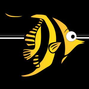 Angelfish clipart fish swimming Com Swim Angelfish Levels SwimWest