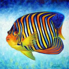 Angelfish clipart orange things