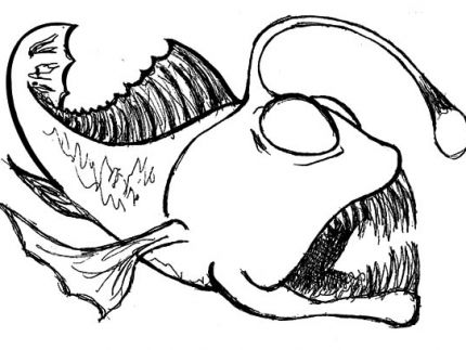 Anglerfish clipart black and white Of Pages Angler Angler Fish