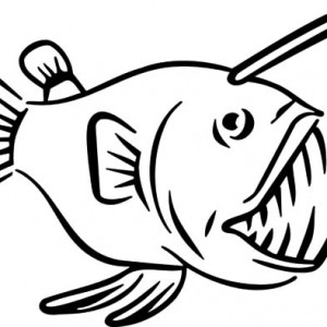 Anglerfish clipart black and white Fish Pages Pages coloring pages