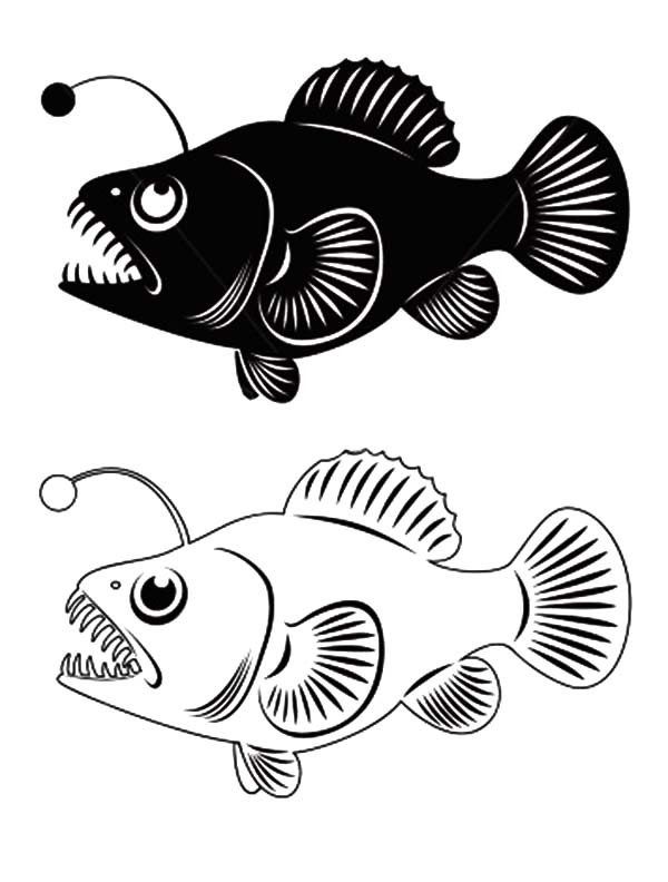 Anglerfish clipart black and white Download Anglerfish #15 Anglerfish clipart