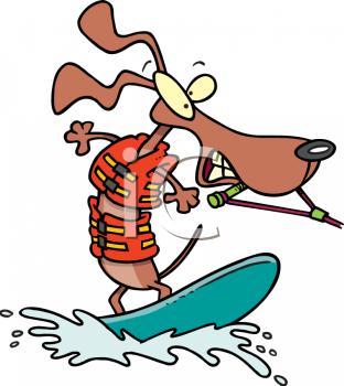 Animal clipart skiing Cartoon Skiing AnimalClipart Water A