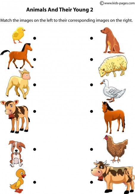 Animal clipart vector On images 297 Animals Kids