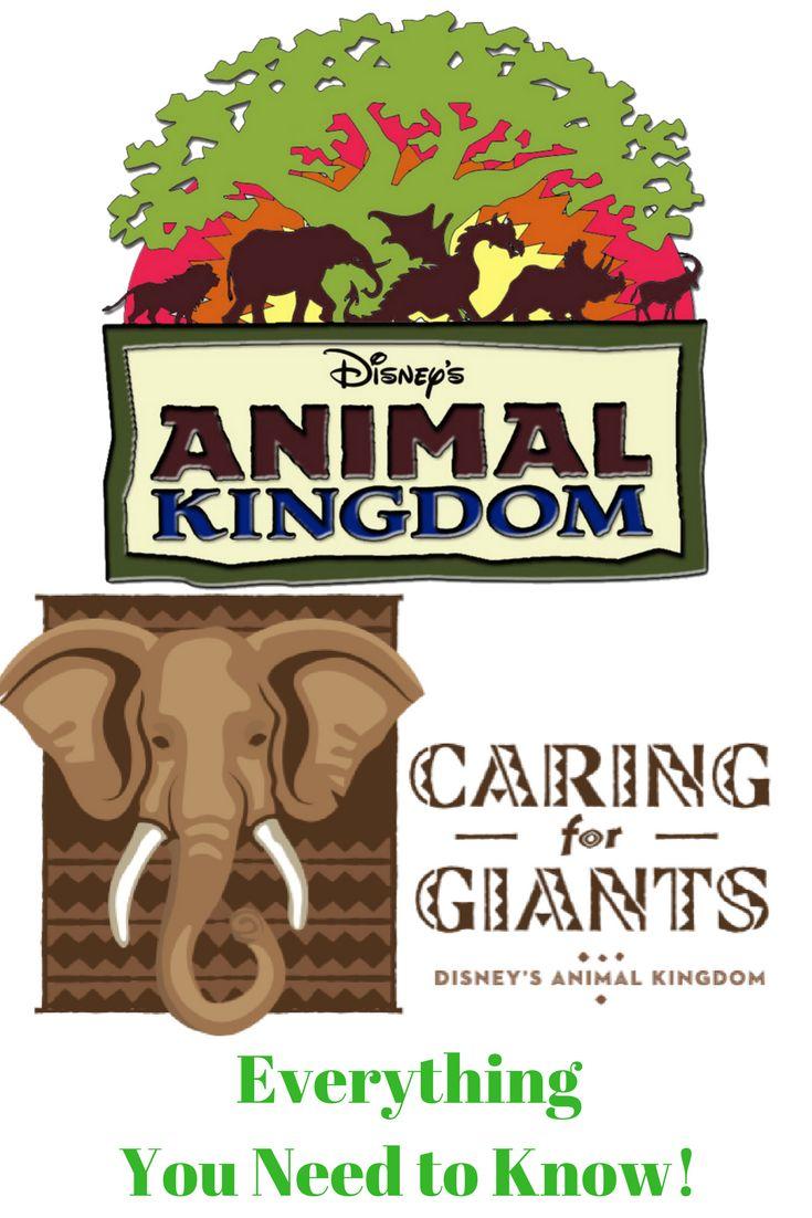 Animal Kingdom clipart animal care Giants Kingdom Animal for at