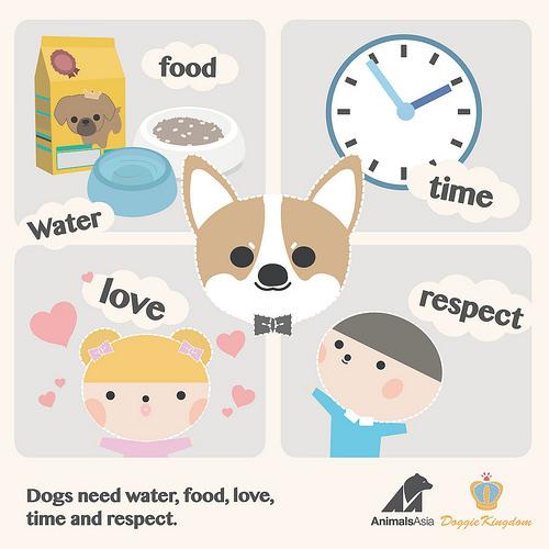 Animal Kingdom clipart animal care Care to Canine cartoons set