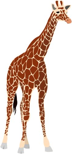 Animal Kingdom clipart animal care Pin S on this and