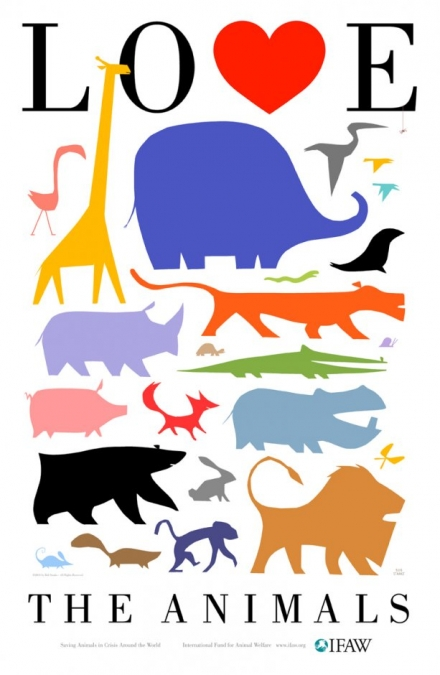 Animal Kingdom clipart animal care Animals the Animals the Save