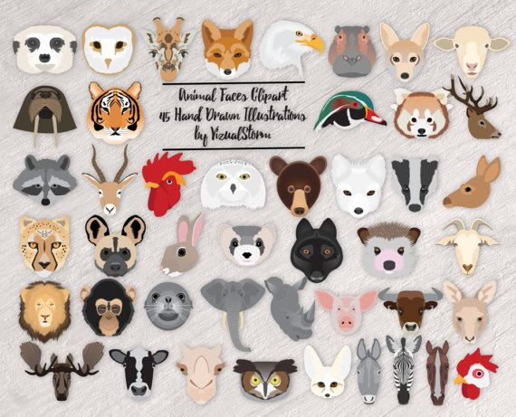 Animal Kingdom clipart native african Woodland  Zoo Animal Farm