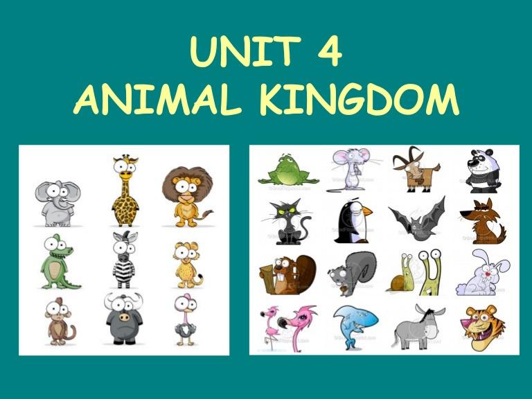 Animal Kingdom clipart vertebrate KINGDOM  ANIMAL ESO 1º