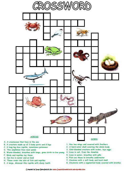 Animal Kingdom clipart vertebrate Ideas Best Animal Worksheets Activity