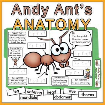 Ant clipart andy On unit Andy best File