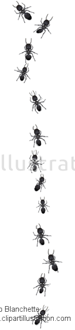 Ant clipart ant trail Vector Trail by Illustration Illustrations