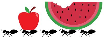 Ant clipart artist Sundress Ants! Picnic Showdown: of