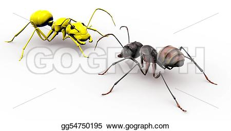 Ant clipart face Stock ant a Stock Ant