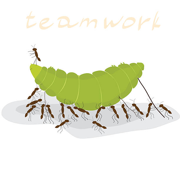 Ant clipart invertebrate Art March Of Clipart Collection