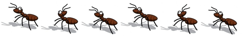 Ant clipart marching School The ants Country Winslow