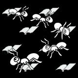 Ants clipart five Ants Ants Five Ants Clip