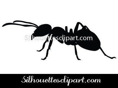 Ant clipart silhouette Pinterest on best Art Vector