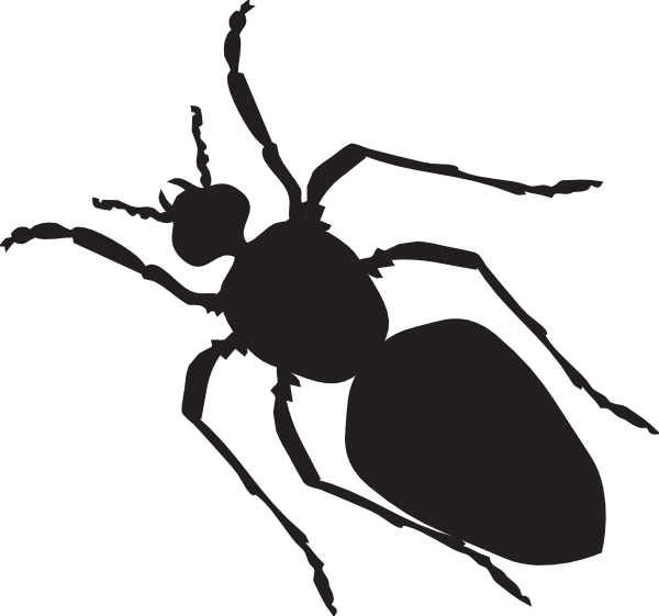 Ant clipart silhouette Clker at Black vector com