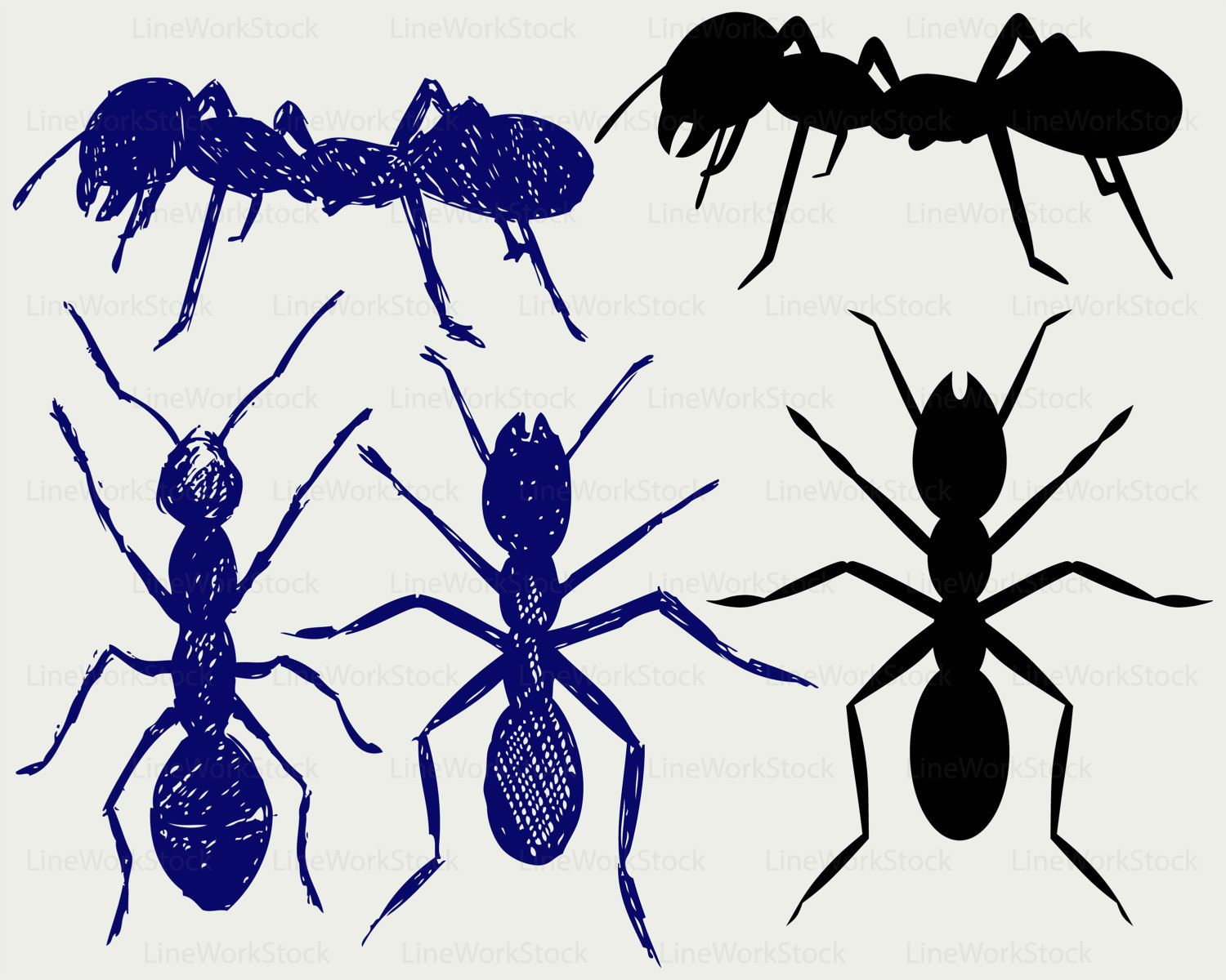 Ant clipart silhouette Svg ant file silhouette insects