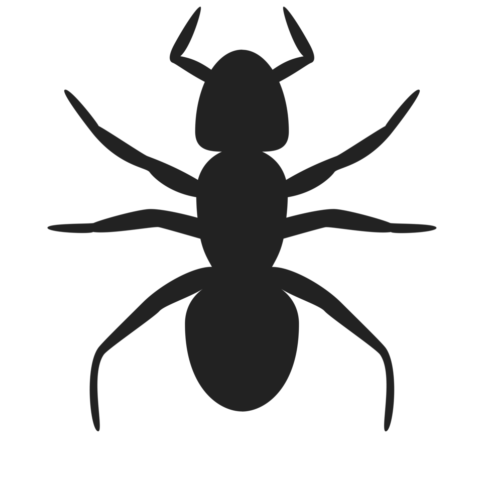 Ants clipart silhouette Silhouette Ant an Photo of