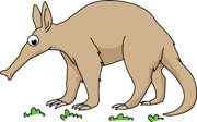 Anteater clipart  Results anteater Graphics Results