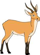 Antelope clipart Clipart Views Antelope 53; Downloads
