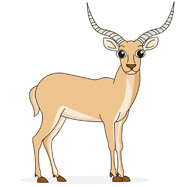 Antelope clipart Graphics Clipart Antelope Antelope 72