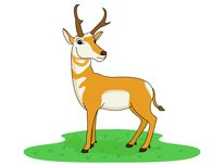 Antelope clipart Standing 41 Art Free Graphics