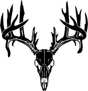 Buck clipart deer skull Info Decal Panda Clipart Clipart