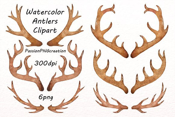 Antler clipart watercolor Watercolor Watercolor Creative on Market