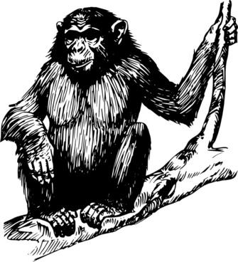 Ape clipart Fans ape #57 art Ape