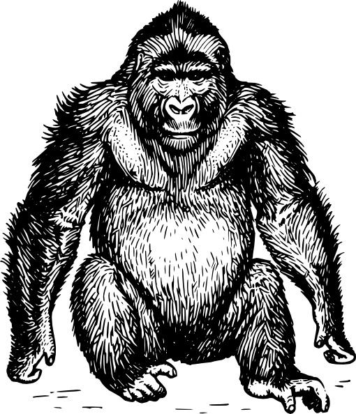 Ape clipart Svg clip Ape Free Open