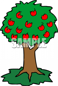 Mango clipart apple Clipart Clipart Tree Mango Free