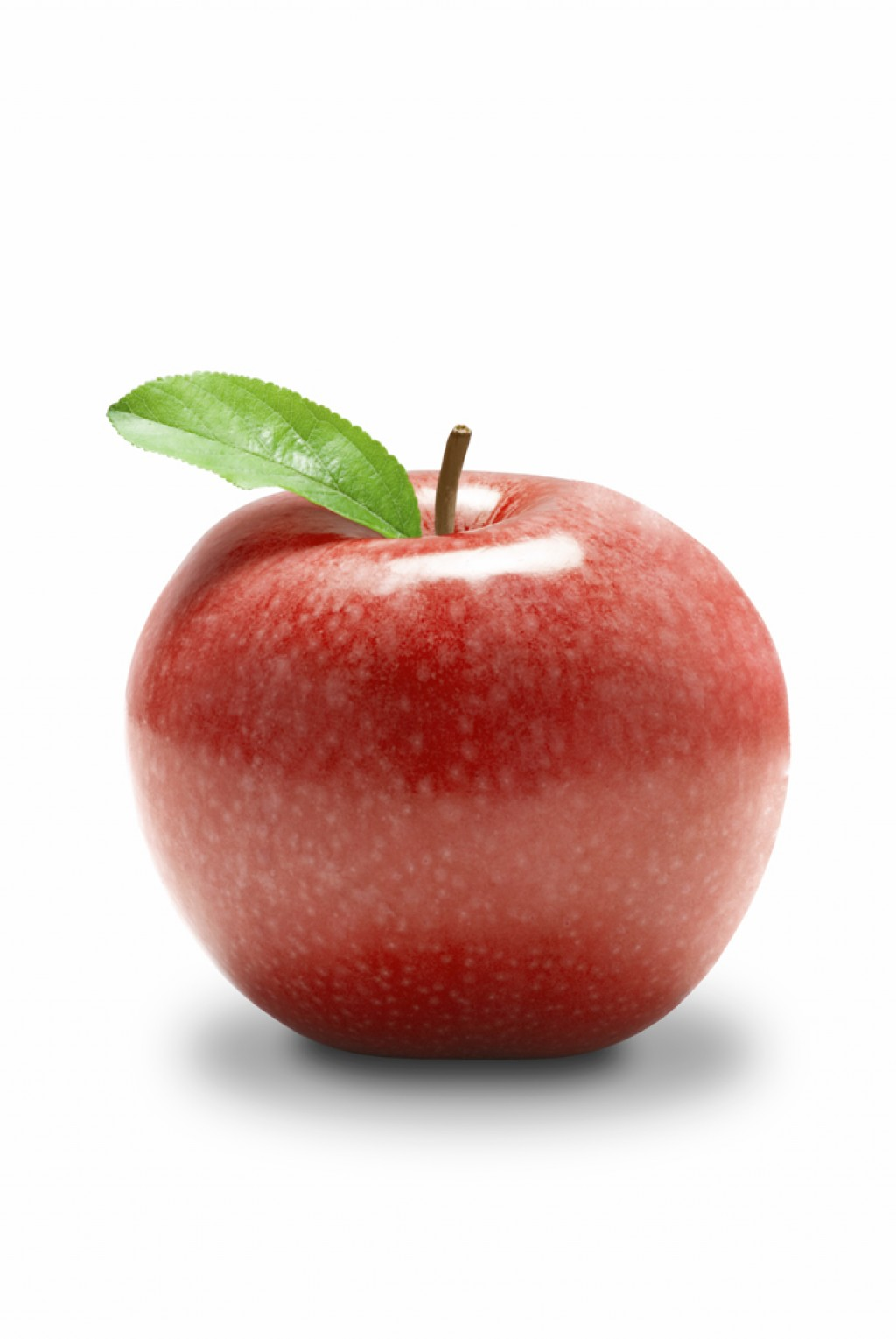 Apple clipart realistic For for Guide and Guide