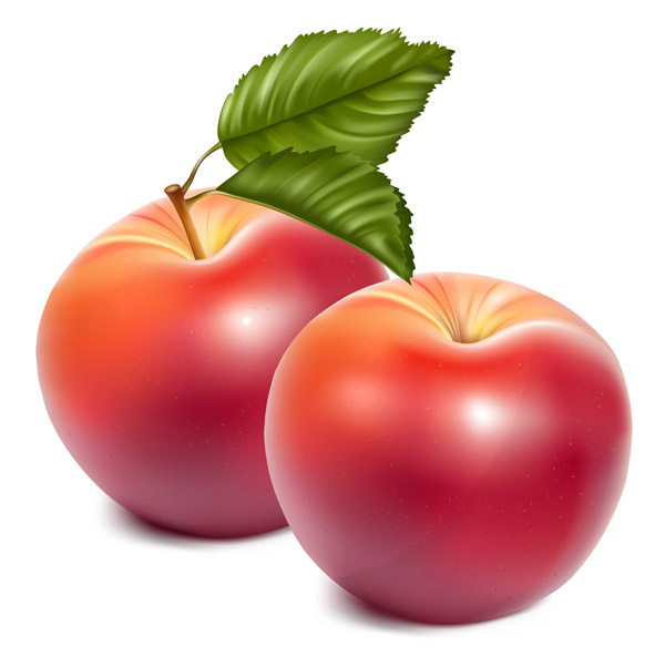 Apple clipart realistic Clipart clipart free Apples free