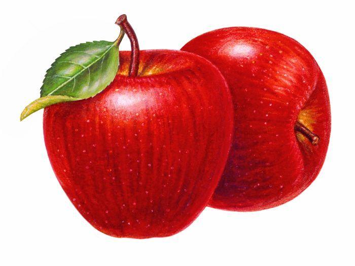 Apple clipart sack Vermelha Maça and Adorei Decoupagem