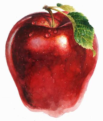 Apple clipart sack Of and up and fresh