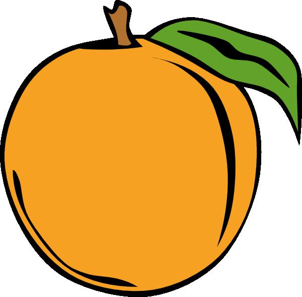 Apricot clipart cartoon Images apricot%20clipart Clipart Apricot Panda