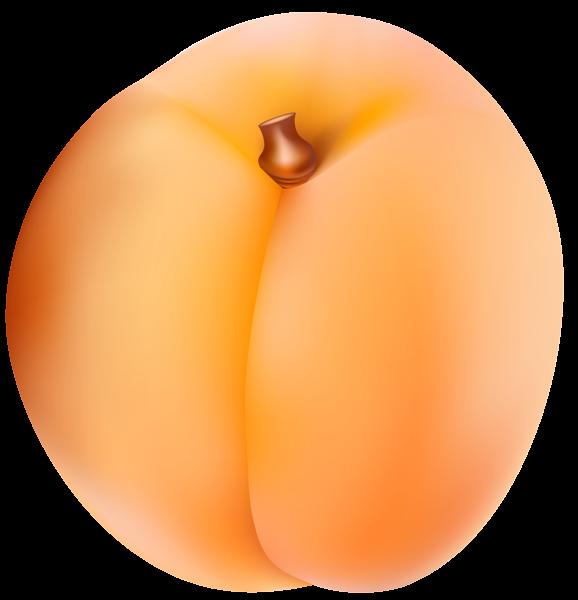Apricot clipart cartoon Art Clip Apricot High PNG