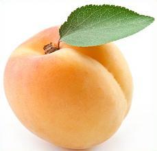 Apricot clipart cartoon Apricot Free Clipart Apricot