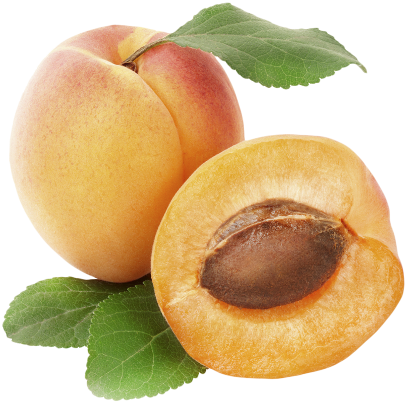 Apricot clipart cartoon Yopriceville Gallery View Picture full
