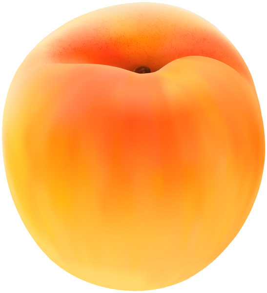 Apricot clipart cartoon PNG Free Apricot Gallery